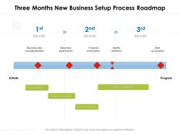 Three Months New Business Setup Process Roadmap