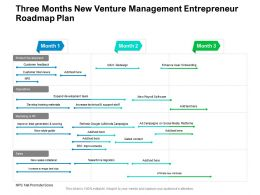 Three Months New Venture Management Entrepreneur Roadmap Plan