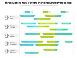 Three Months New Venture Planning Strategy Roadmap