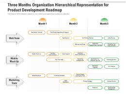 Three Months Organization Hierarchical Representation For Product Development Roadmap