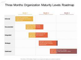 Three Months Organization Maturity Levels Roadmap