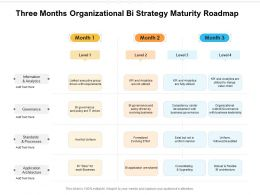 Three Months Organizational Bi Strategy Maturity Roadmap
