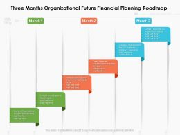 Three Months Organizational Future Financial Planning Roadmap