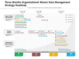 Three Months Organizational Master Data Management Strategy Roadmap