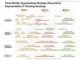 Three Months Organizational Strategic Hierarchical Representation IT Planning Roadmap