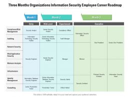 Three Months Organizations Information Security Employee Career Roadmap