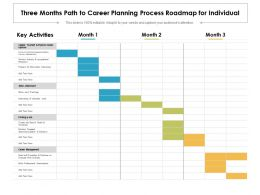 Three Months Path To Career Planning Process Roadmap For Individual