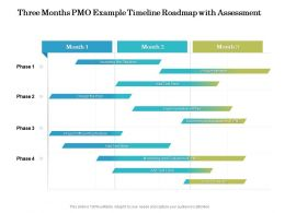 Three Months PMO Example Timeline Roadmap With Assessment