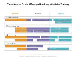 Three Months Product Manager Roadmap With Sales Training