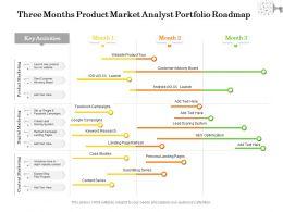 Three Months Product Market Analyst Portfolio Roadmap