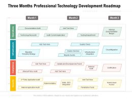 Three Months Professional Technology Development Roadmap
