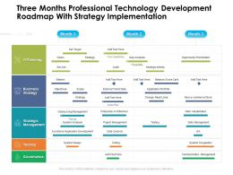 Three Months Professional Technology Development Roadmap With Strategy Implementation