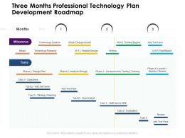 Three Months Professional Technology Plan Development Roadmap