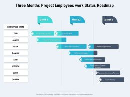 Three Months Project Employees Work Status Roadmap