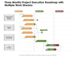Three Months Project Execution Roadmap With Multiple Work Streams
