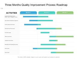 Three Months Quality Improvement Process Roadmap
