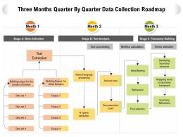 Three Months Quarter By Quarter Data Collection Roadmap