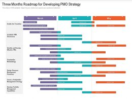 Three Months Roadmap For Developing PMO Strategy