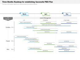 Three Months Roadmap For Establishing Successful PMO Plan