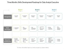 Three Months Skills Development Roadmap For Data Analyst Executive