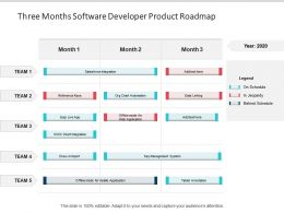 Three Months Software Developer Product Roadmap