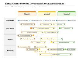 Three Months Software Development Swimlane Roadmap