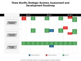 Three Months Strategic Business Assessment And Development Roadmap