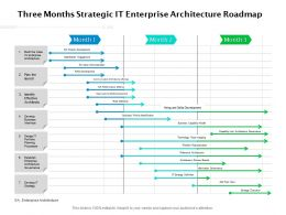 Three Months Strategic IT Enterprise Architecture Roadmap
