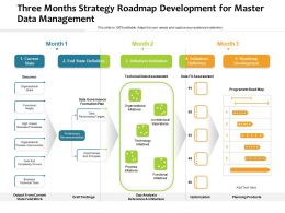 Three Months Strategy Roadmap Development For Master Data Management