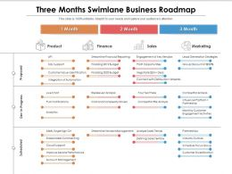 Three Months Swimlane Business Roadmap