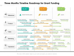 Three Months Timeline Roadmap For Grant Funding