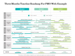 Three Months Timeline Roadmap For PMO With Example