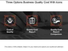 Three Options Business Quality Cost With Icons