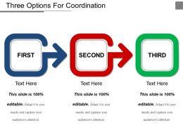 Three Options For Coordination Ppt Example File