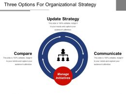 Three Options For Organizational Strategy Ppt Examples