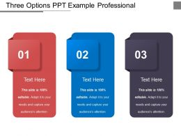 Three Options Ppt Example Professional