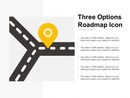 Three Options Roadmap Icon