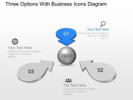 Three Options With Business Icons Diagram Powerpoint Template Slide
