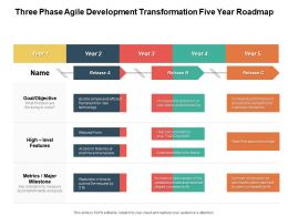 Three Phase Agile Development Transformation Five Year Roadmap