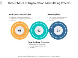 Three Phases Of Organization Assimilating Process
