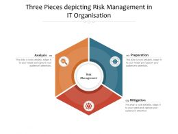 Three Pieces Depicting Risk Management In It Organisation