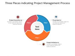 Three Pieces Indicating Project Management Process