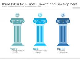 Three Pillars For Business Growth And Development