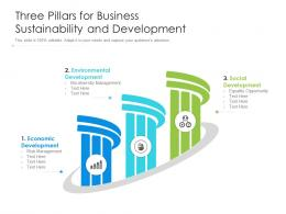 Three Pillars For Business Sustainability And Development