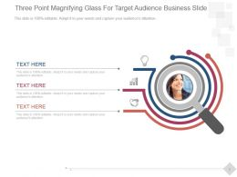 Three Point Magnifying Glass For Target Audience Business Slide