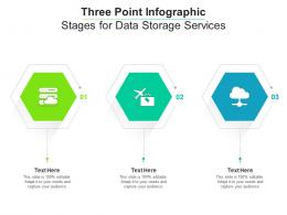 Three Point Stages For Data Storage Services Infographic Template