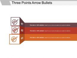 Three Points Arrow Bullets