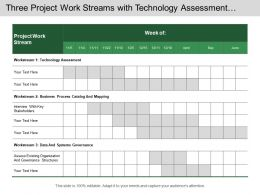 Three Project Work Streams With Technology Assessment And Business Process Mapping