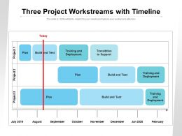 Three Project Workstreams With Timeline
