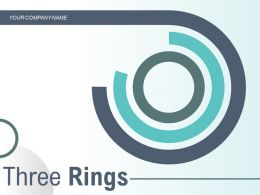Three Rings Process Organization Controlling Portfolio Management Innovation